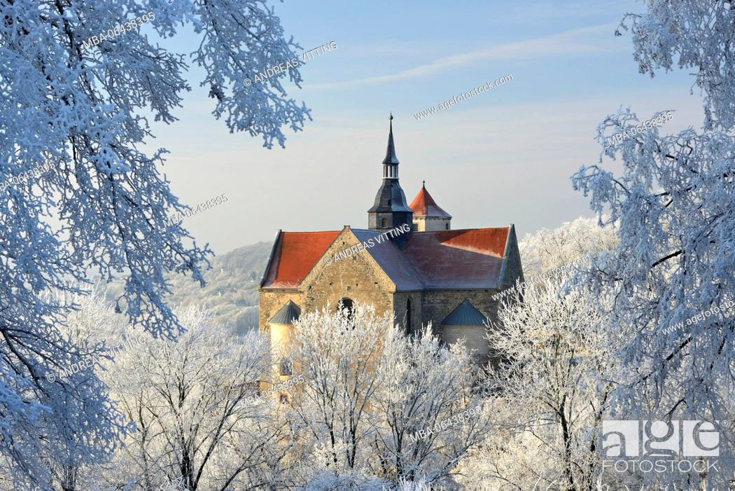Stock Photo: Germany, Saxony-Anhalt, Burgenlandkreis (district), Goseck, Saaletal (valley), Schloss Goseck (castle) in winter, trees covered with hoarfrost.