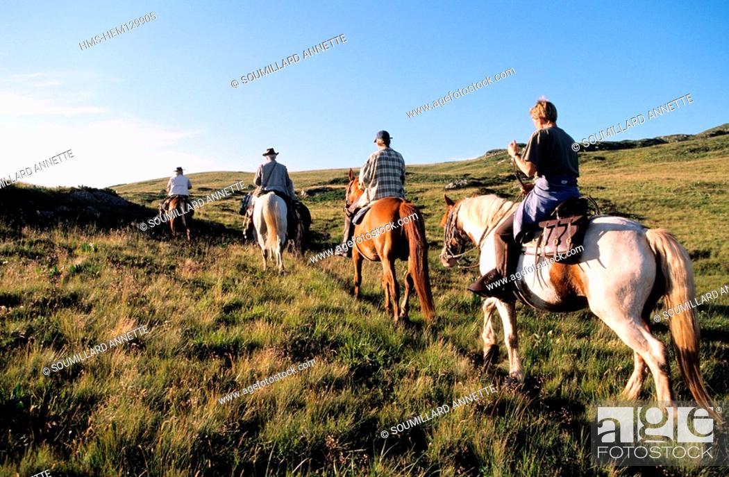 Stock Photo: France, Puy de Dome, equestrian tourism in Sancy massif.