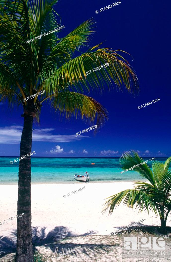 Stock Photo: Mauritius, Morne Brabant.