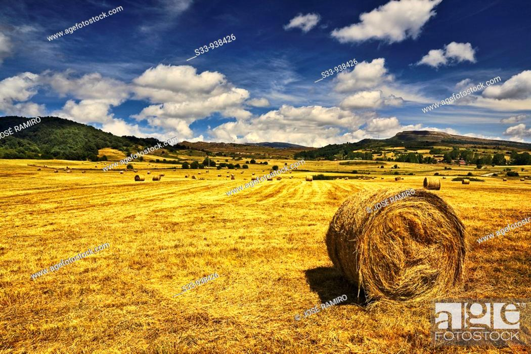 Stock Photo: Campo en Soncillo. Burgos, Castile-Leon, Spain.