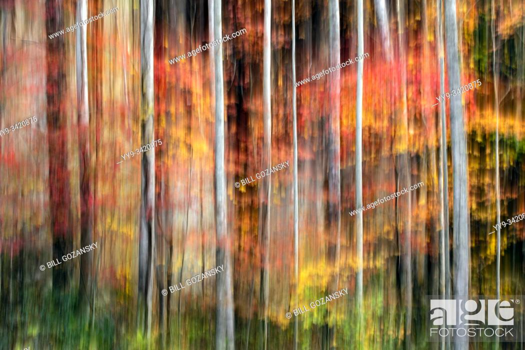 Stock Photo: Painterly abstract motion blur of vibrant fall colors in Pisgah National Forest, Brevard, North Carolina, USA.