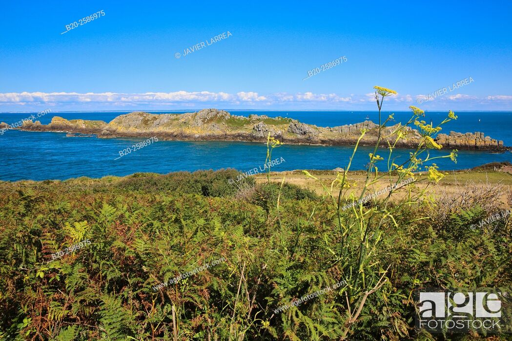 Stock Photo: Landes Island, L'île des Landes, Pointe du Grouin, Cancale, Brittany, Bretagne, France.
