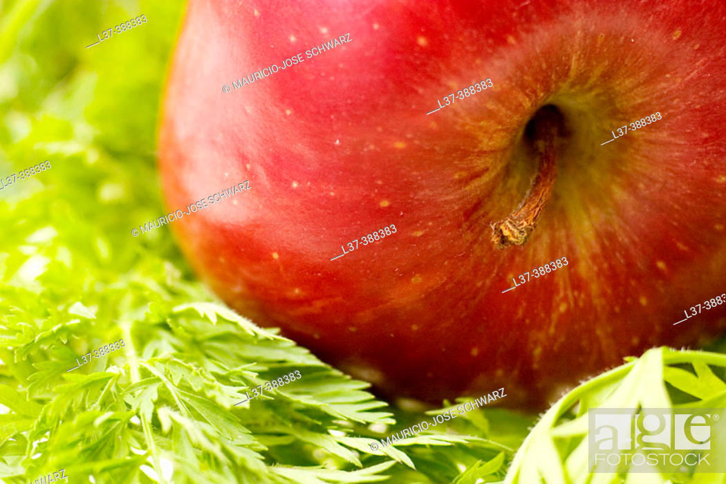 Stock Photo: Red apple.