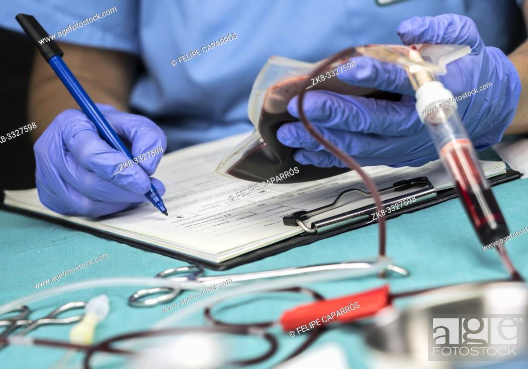 Stock Photo: Nurse takes data from a blood bag in a hospital, conceptual image.