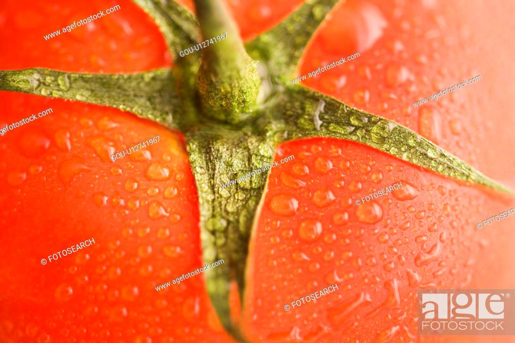 Stock Photo: Close up of wet red ripe tomato.
