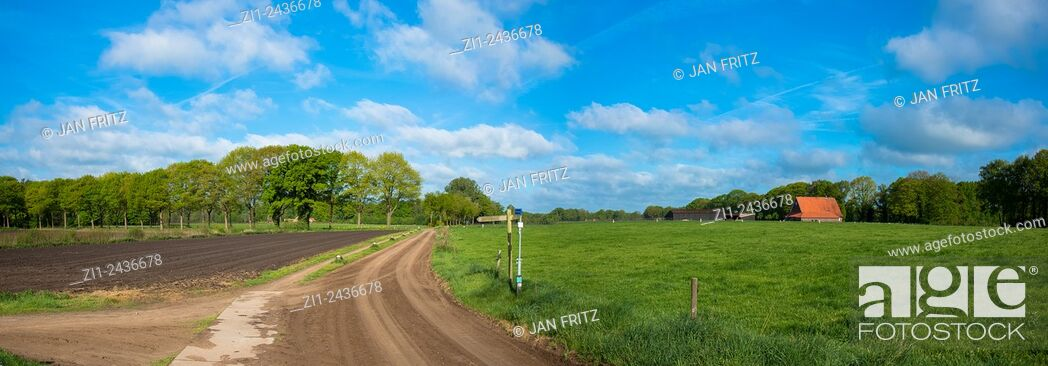 Stock Photo: panorama of landscape with grassland, dirtroad, farm and plowed field at eastern holland.
