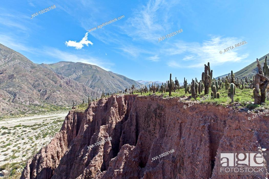 Stock Photo: Landscape near the mountain resort Juella, Jujuy Province, Argentina, South America.