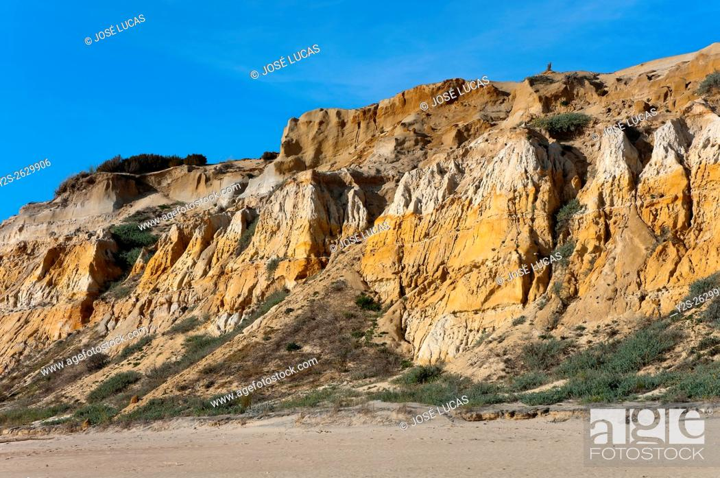 Stock Photo: Natural Monument Cliffs of the Asperillo, Almonte, Huelva province, Region of Andalusia, Spain, Europe.