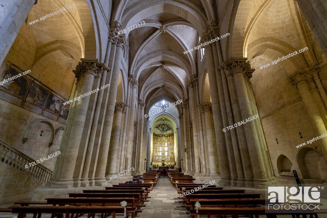 Imagen: Retablo de la Catedral Vieja, Catedral de la Asunción de la Virgen, catedral vieja, Salamanca, comunidad autónoma de Castilla y León, Spain.