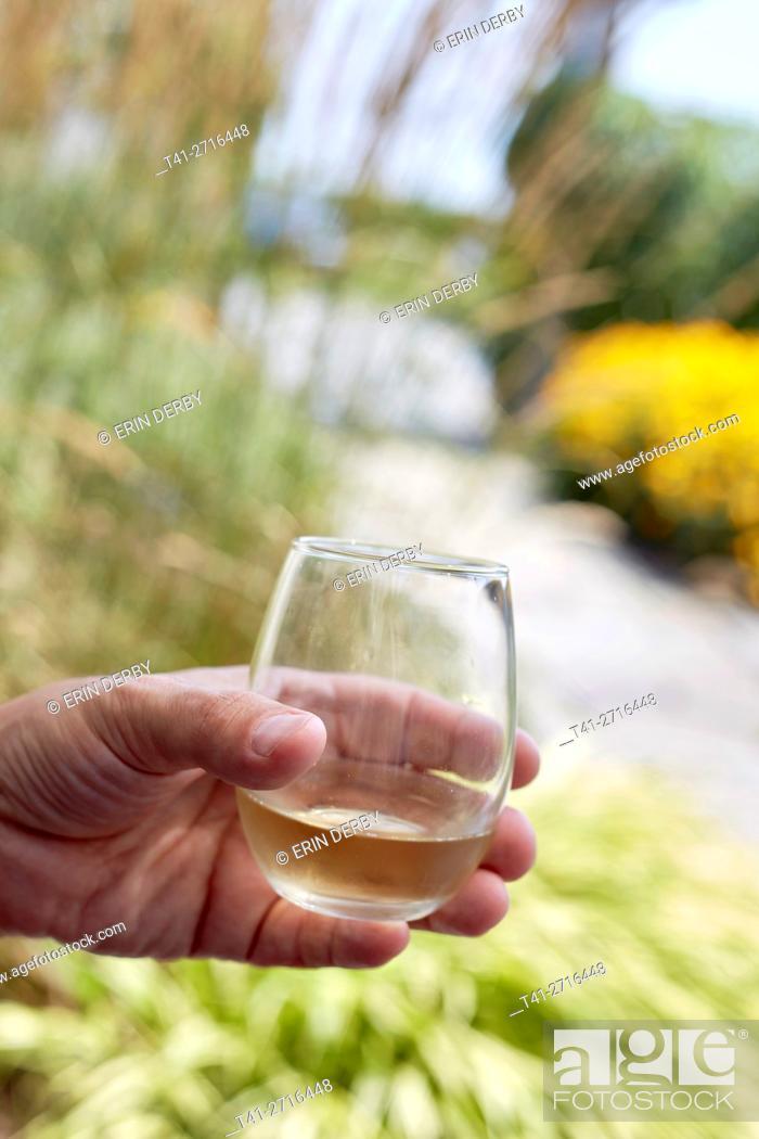 Stock Photo: wine glass.
