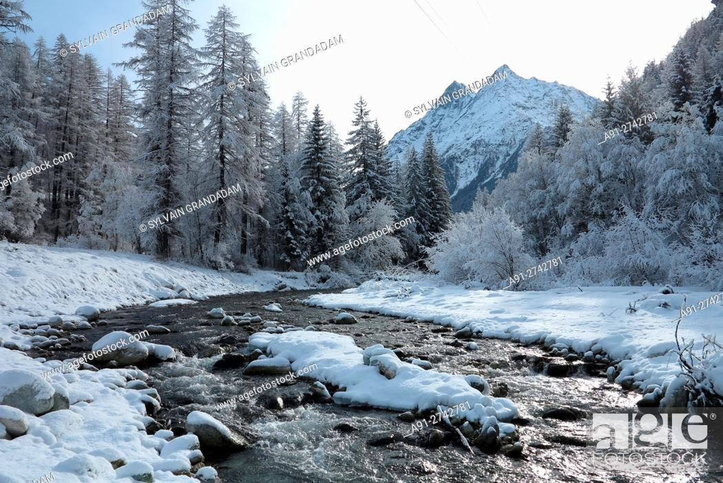 Stock Photo: Switzerland, Valais, Val d'Herens, village of Evolene in winter, hiking along river Borgne.