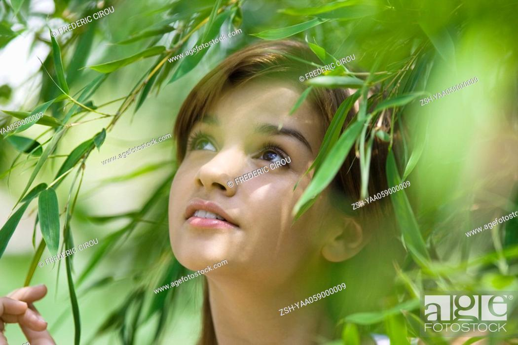Stock Photo: Young woman standing in foliage, looking up, close-up.