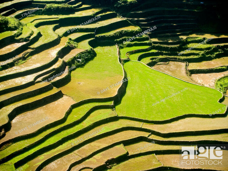 Stock Photo: northern Philippines amazing rice terraces, near Banaue, Luzon.