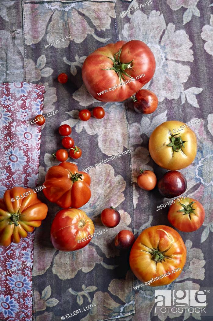 Imagen: An arrangement of tomatoes on floral-patterned fabric.
