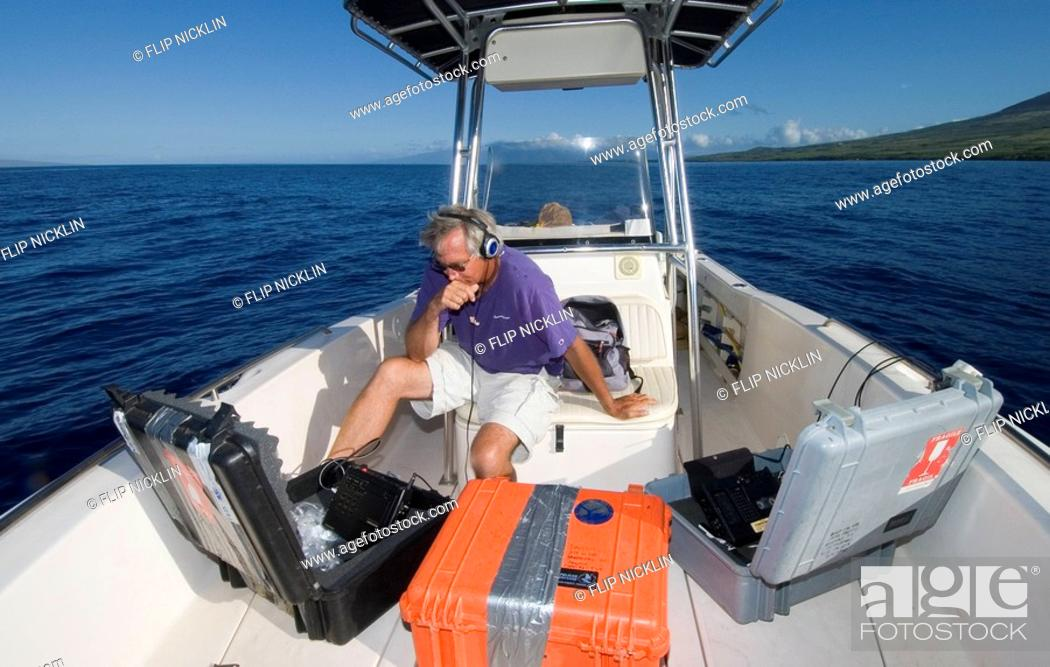 Stock Photo: Marine biologist Dr  Jim Darling listening to and recording Humpback Whale Megaptera novaeangliae songs, Humpback Whale National Marine Sanctuary, Maui.