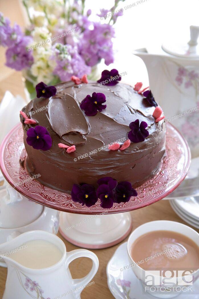 Stock Photo: Chocolate Sponge Cake.