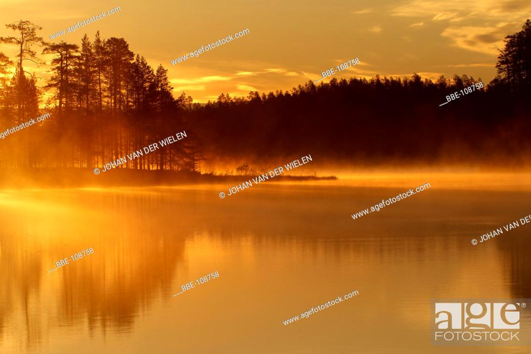 Stock Photo: yellow morning light shines over the misty lake.