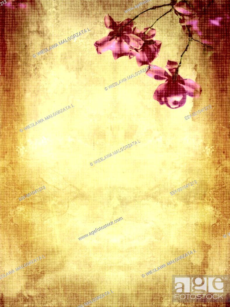 Stock Photo: Beautiful grunge background with magnolia.
