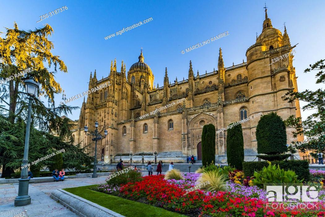 Imagen: Facade of the Puerta de Ramos of the New Cathedral, from the Plaza de Anaya. Salamanca, Castilla y Leon, Spain, Europe.