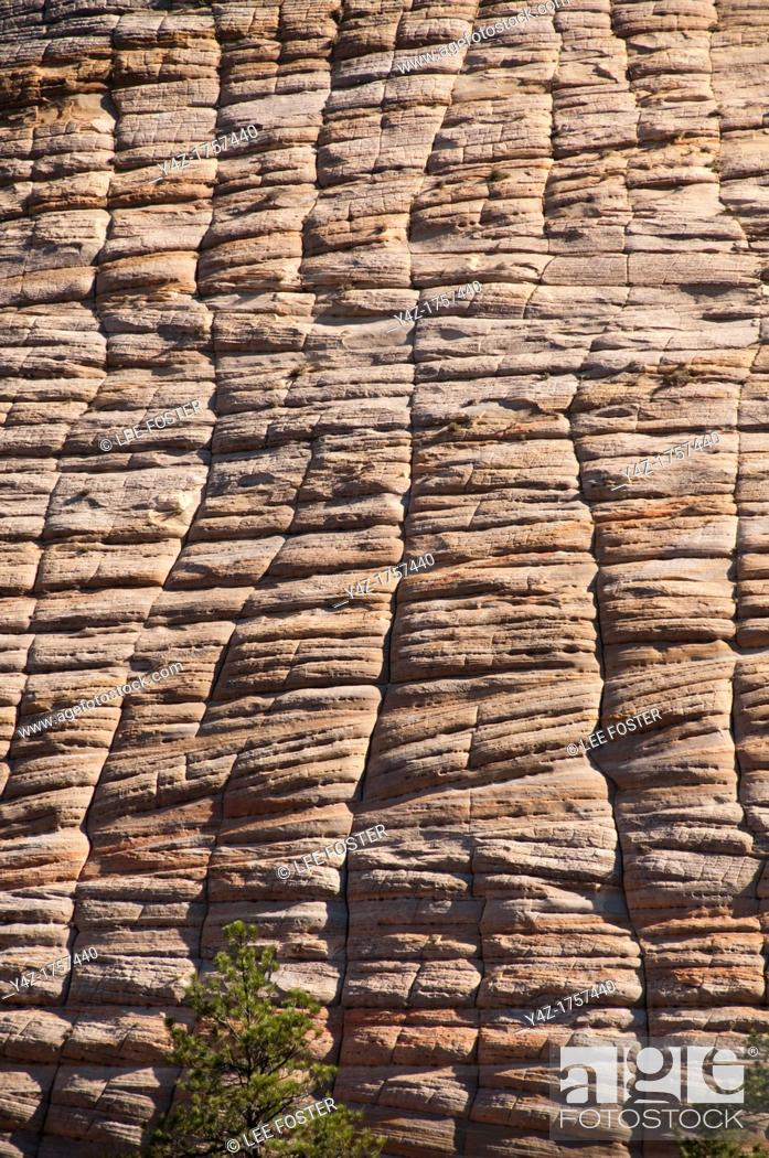 Stock Photo: USA Utah, Checkerboard Mesa in Zion National Park.