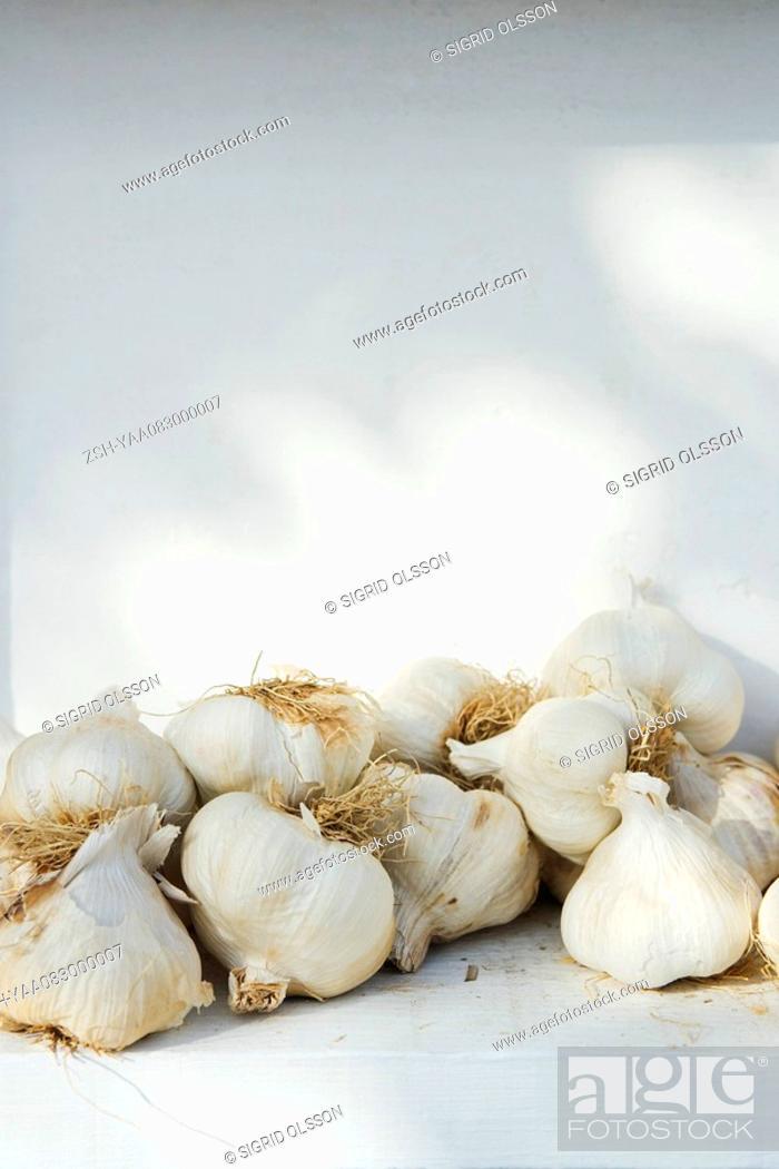 Stock Photo: Heap of garlic.