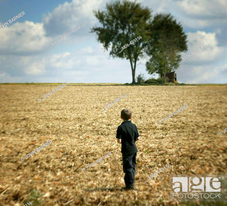 Stock Photo: A boy looks to a copse of trees.