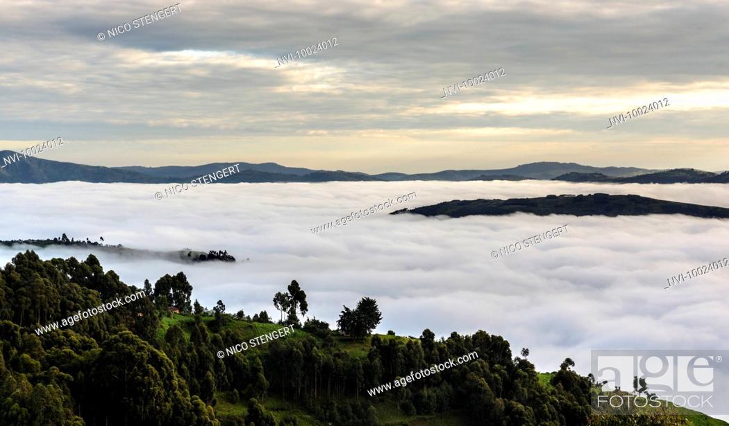 Imagen: Morning fog in the mountains on Lake Bunyonyi, Kabale District, Uganda, Africa.