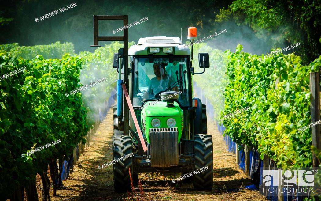 Stock Photo: Farmer spraying the vineyard with water in the Dordogne, France in summer.