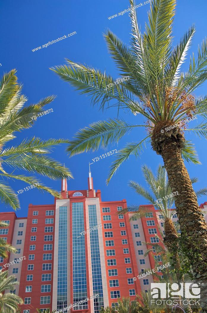 Stock Photo: Looking up towards palm trees at the Hilton Grand Vacations Club at the Flamingo in Las Vegas, Nevada, United States.