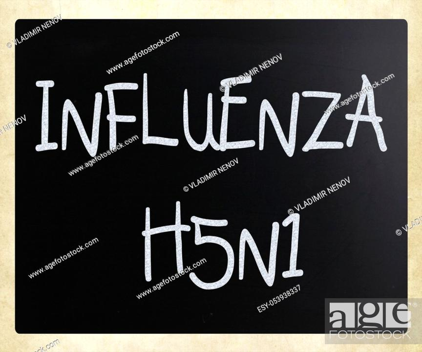 Stock Photo: Images of the H5N1 Influenza Virus.