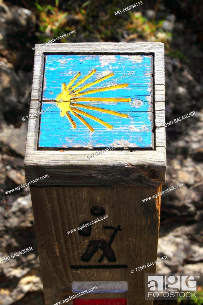 Stock Photo: Way of Saint James wood pilgrims road sign shell shape.