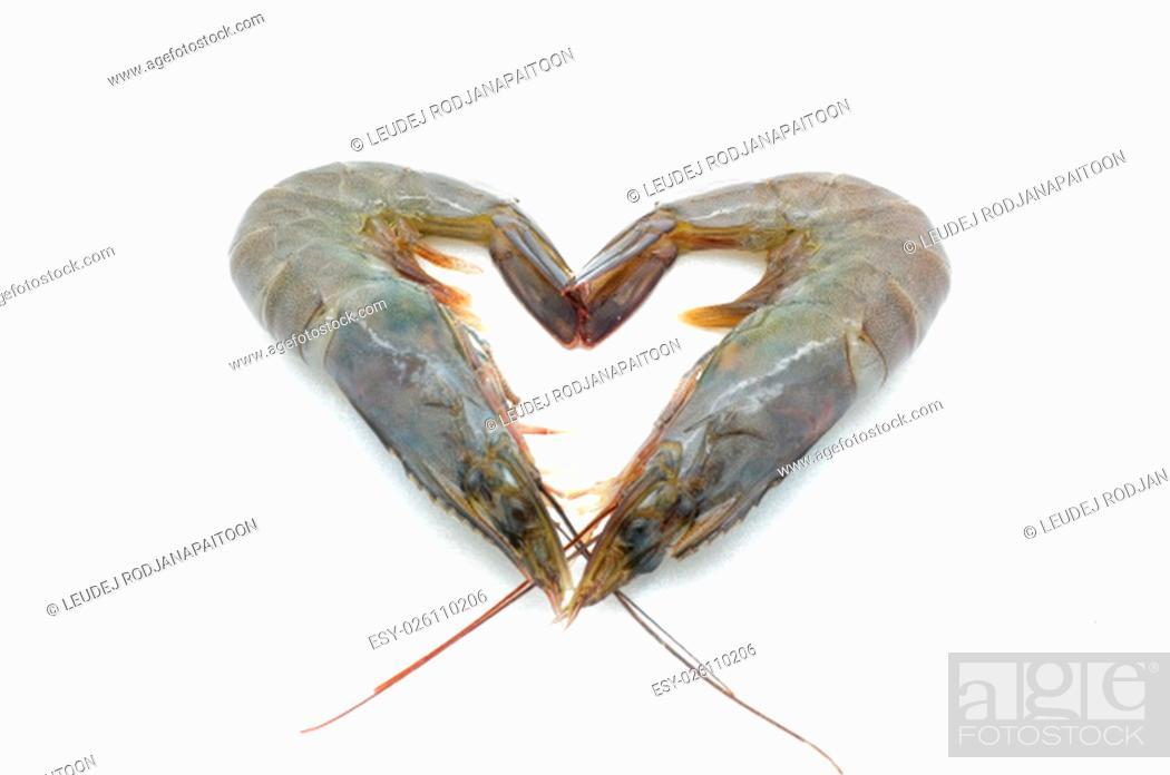 Stock Photo: Raw / fresh shrimp / prawn isolated on white background.