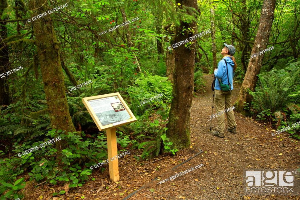 Stock Photo: Interpretive board along Pioneer Path Trail, Kilchis Point Reserve, Bay City, Oregon.