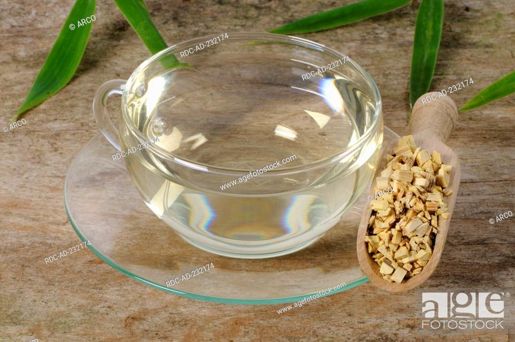 Stock Photo: Cup of Clematis armandii stems tea, Caulis Clematidis Armandii, Mu Tong, Mutong Caulis.