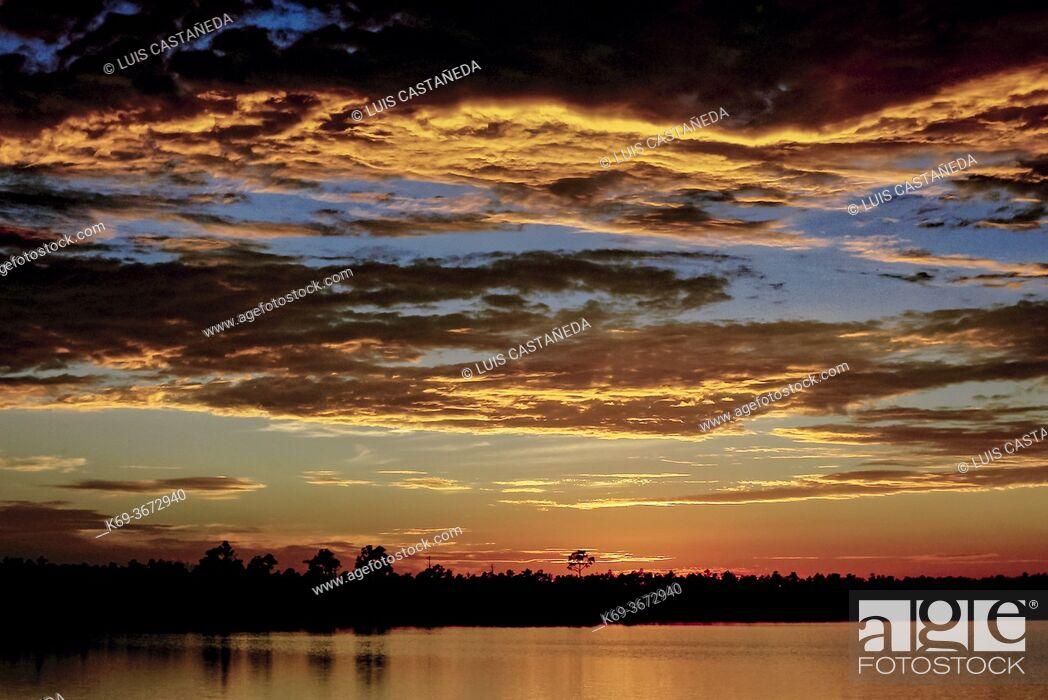 Stock Photo: Sunset at The Everglades National Park. Florida. USA.