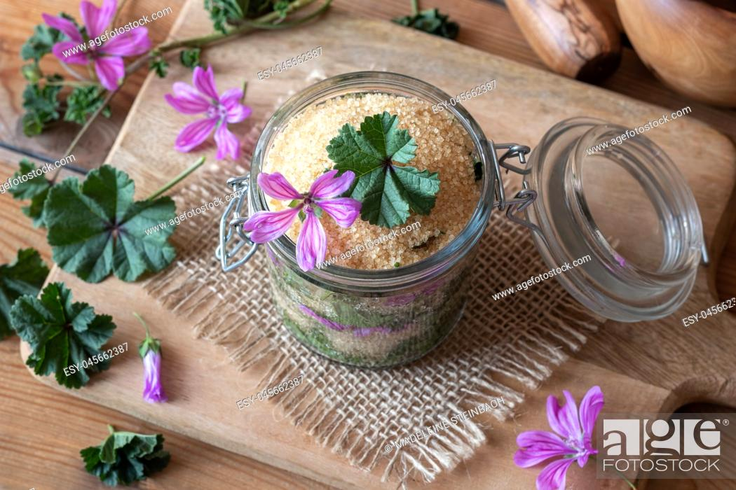 Stock Photo: A jar filled with wild common mallow flowers and leaves and cane sugar, to prepare herbal syrup against cough.