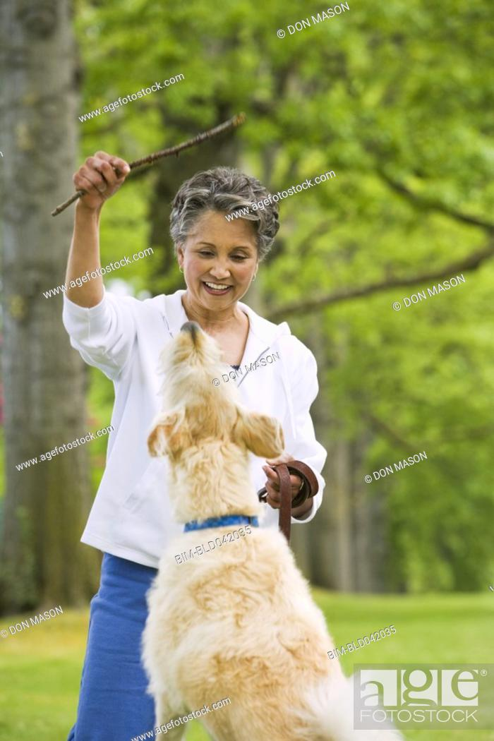 Stock Photo: African American woman playing with dog.