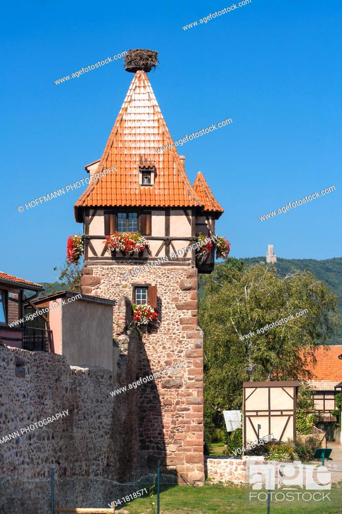 Stock Photo: Medieval witches tower in Chatenois, Alsace, France, Europe.