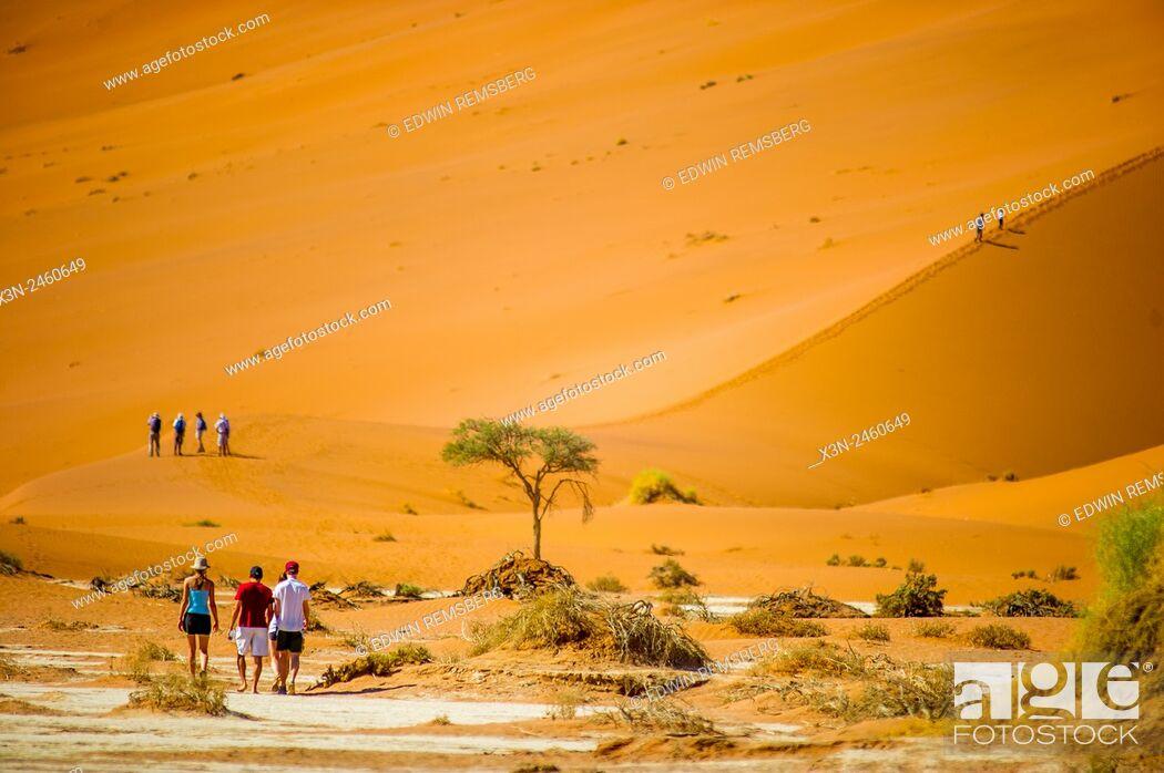 Stock Photo: Sossusvlei, Namibia, Africa - People walking through the desert.
