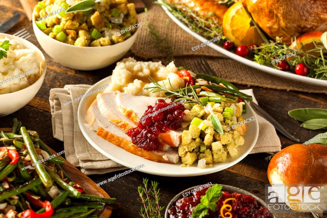 Stock Photo: Homemade Thanksgiving Turkey on a Plate with Stuffing and Potatoes.