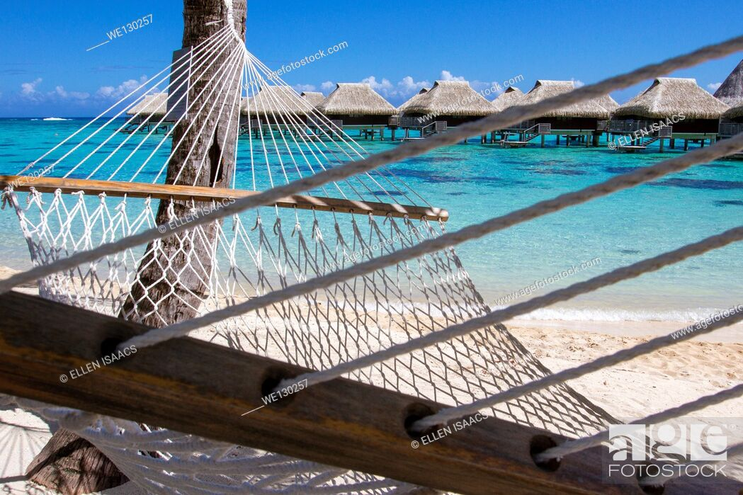 Stock Photo: Rope hammock on a beach with overwater bungalows by the turquoise waters of Moorea in French Polynesia.