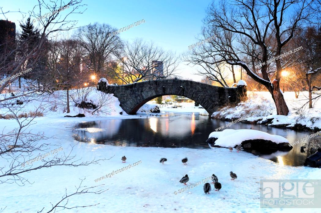 Stock Photo: New York City Manhattan Central Park in winter.