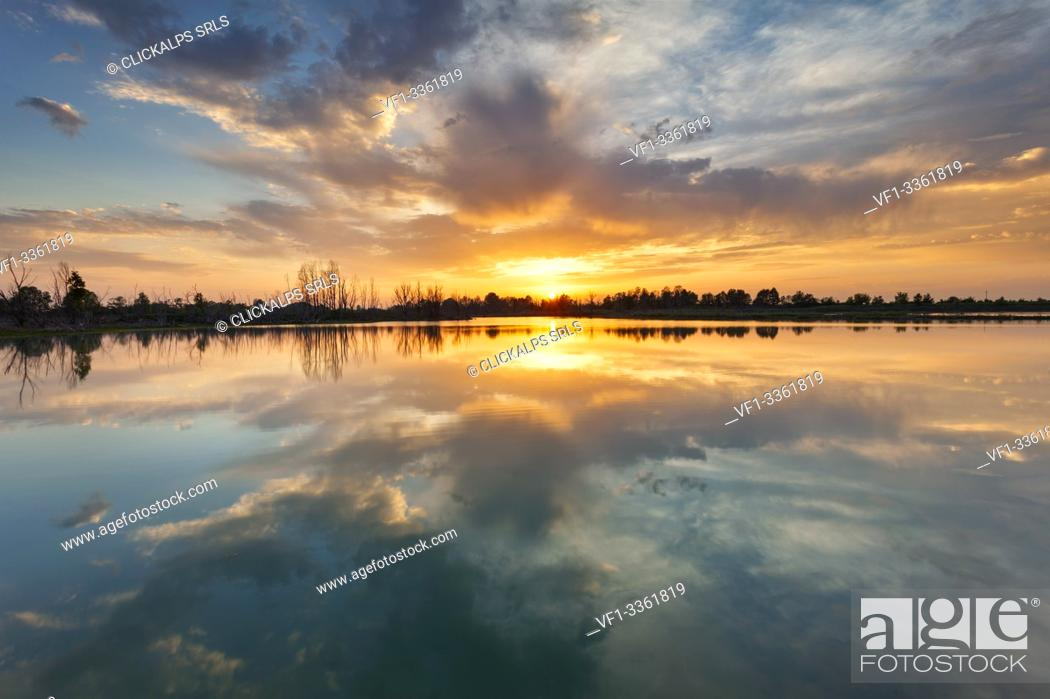 Stock Photo: Lake Le Folaghe at sunset, Po Valley, Lombardy, Pavia province, Italy, Europe.