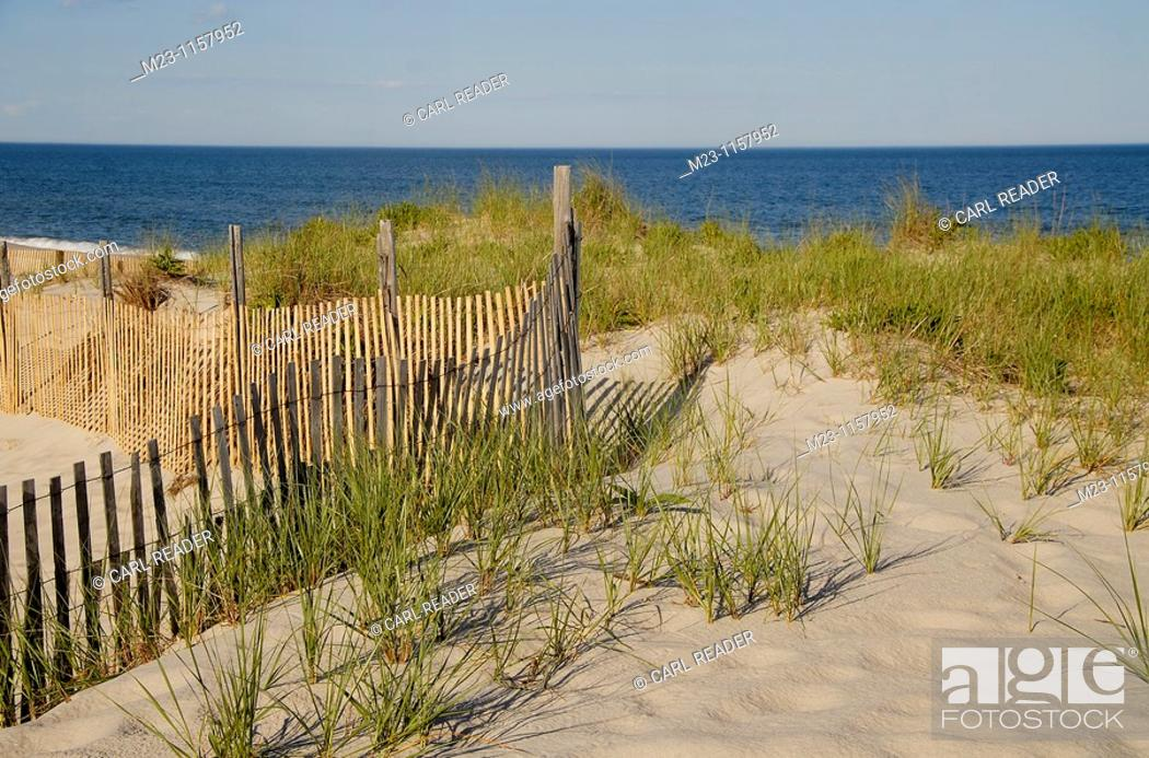 Imagen: A fence protects fragile dunes, Long Beach Island, New Jersey, USA.