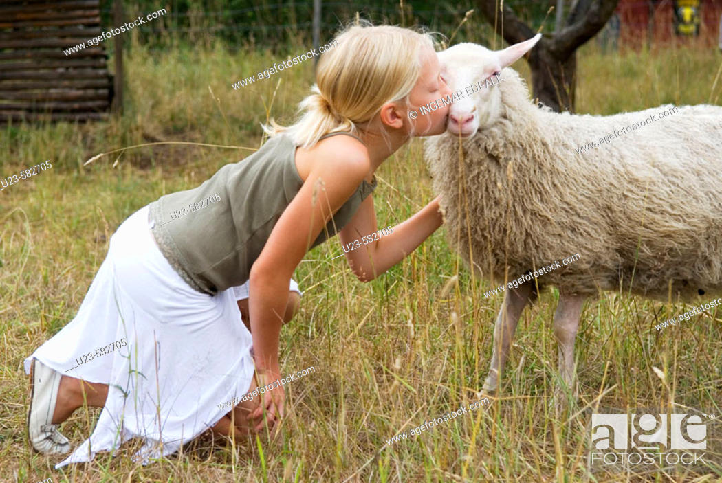 Stock Photo: Girl kissing her ewe.