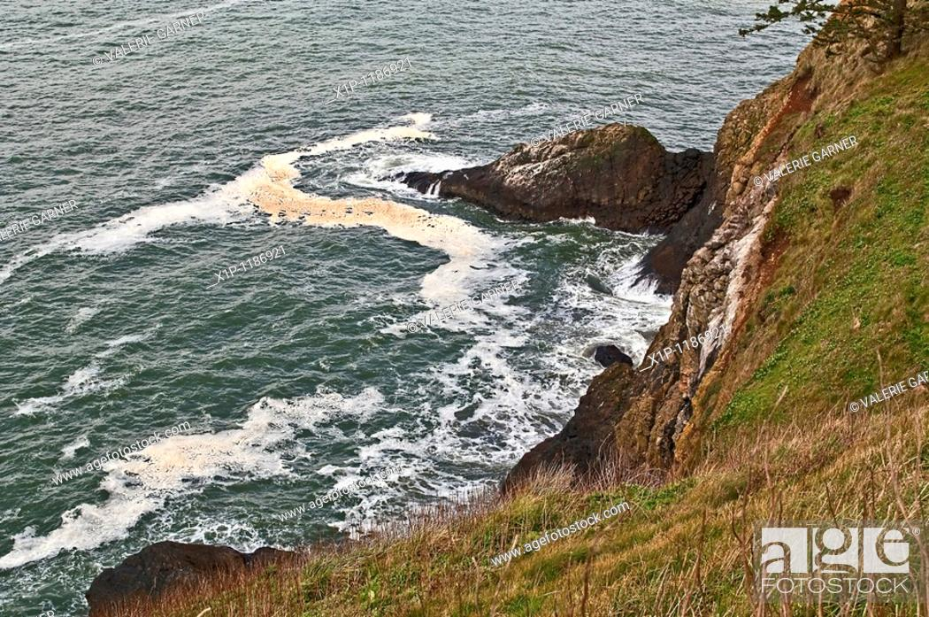 Stock Photo: This ocean scene is looking down a cliff a the water below where there's a large scum layer of pollution in this water environment This ecosystem needs cleanup.