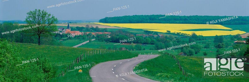 Stock Photo: Country Road, near Dijon, France.