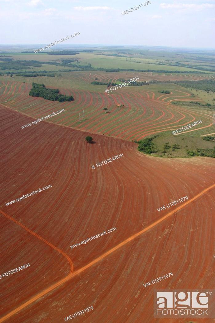 Stock Photo: agriculture, array, aerial view.