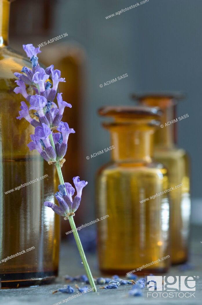 Stock Photo: Twig of lavender leaning on brown glass bottle.