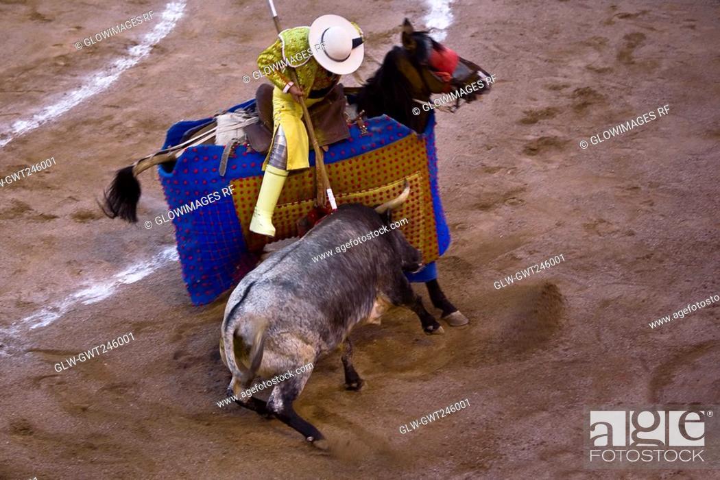 Stock Photo: High angle view of a bull fighting, Plaza De Toros San Marcos, Aguascalientes, Mexico.